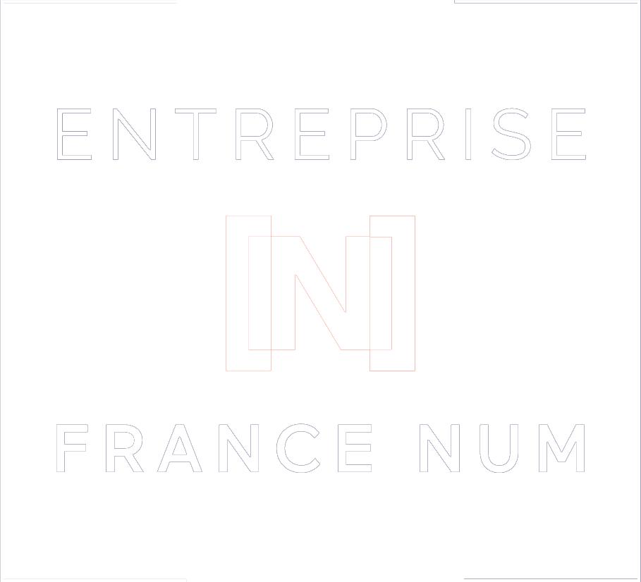logo FrancNum Blanc